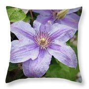 Blue Clematis Throw Pillow