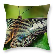 Blue Clipper - Looking Up Throw Pillow