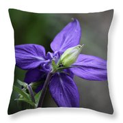 Blue Columbine Squared 1 Throw Pillow