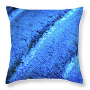 Blue Curves Throw Pillow by Todd Blanchard