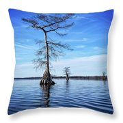 Blue Cypress Throw Pillow