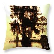 Blue Cypress Yellow Light Throw Pillow