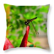 Blue Dasher Damselfly Throw Pillow