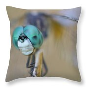 Blue Dasher Dragonfly #1 Throw Pillow