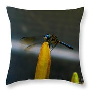 Blue Dhasher Dragonfly Throw Pillow