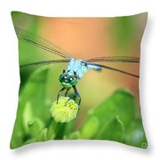 Blue Dragonfly And Bud Throw Pillow