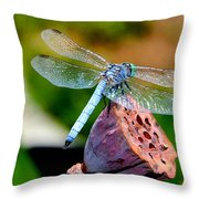 Blue Dragonfly On Lotus Seed Pod Back View Throw Pillow