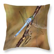 Blue Dragonfly Portrait Throw Pillow by Carol Groenen