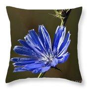 Blue Dream.. Throw Pillow