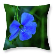 Blue Dreams 2 Throw Pillow by Shiela Kowing