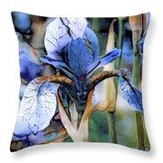 Blue Dutch Iris Throw Pillow