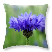 Blue Explosion Throw Pillow