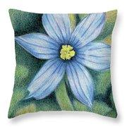 Blue Eyed Grass - 1 Throw Pillow