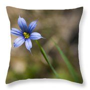 Blue-eyed Grass II Throw Pillow