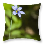 Blue-eyed Grass IIi Throw Pillow