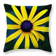 Blue Eyes Throw Pillow