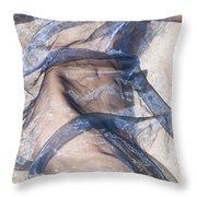 Blue Fabric Throw Pillow