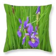 Blue Flag Iris-1  Throw Pillow