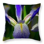 Blue Flag Iris Throw Pillow