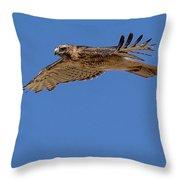Blue Flight Throw Pillow