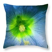 Blue Flower In Morning Sun Throw Pillow