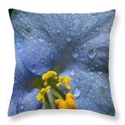Blue Spring Flower Throw Pillow