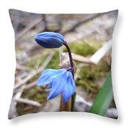 Blue Flowers Throw Pillow