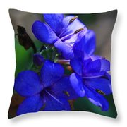 Blue For The Sun Throw Pillow