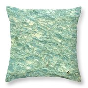 Blue Fossil Throw Pillow
