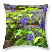 Blue Ginger At The Wall Throw Pillow