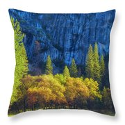 Blue Granite Throw Pillow