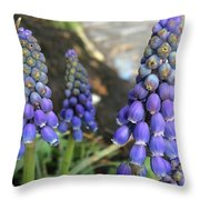 Blue Grape Hyacinths Throw Pillow