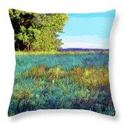 Blue Grass Sunny Day Throw Pillow