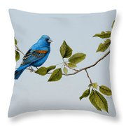 Blue Grosbeak Throw Pillow