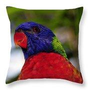 Blue Head Bird Throw Pillow