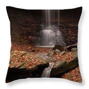 Blue Hen Falls And Cascade Throw Pillow