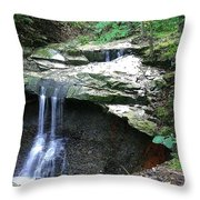 Blue Hen Falls Throw Pillow