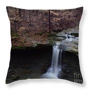 Blue Hen Falls Series II Throw Pillow