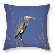 Blue Heron 19 Throw Pillow