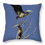 Blue Heron 21 Throw Pillow