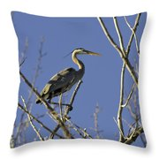 Blue Heron 22 Throw Pillow by Roger Snyder