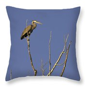 Blue Heron 28 Throw Pillow