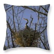Blue Heron 30 Throw Pillow by Roger Snyder