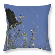 Blue Heron 35 Throw Pillow by Roger Snyder