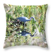 Blue Heron Fishing In A Pond In Bright Daylight Throw Pillow