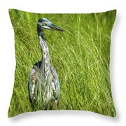 Blue Heron In A Marsh Throw Pillow