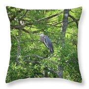 Blue Heron In Green Tree Throw Pillow