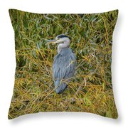 Blue Heron In The Autumn Colours Throw Pillow