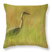Blue Heron In The Grass. Throw Pillow