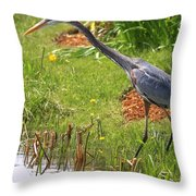 Blue Heron Scene Throw Pillow